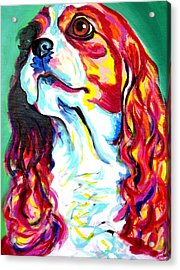 Cavalier - Herald Acrylic Print by Alicia VanNoy Call
