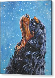Cavalier King Charles Spaniel Black And Tan In Snow Acrylic Print