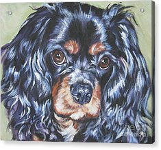 Cavalier King Charles Spaniel Black And Tan Acrylic Print
