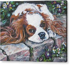 Cavalier King Charles Spaniel In The Pansies  Acrylic Print