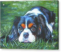 Cavalier King Charles Spaniel Tricolor Acrylic Print by Lee Ann Shepard