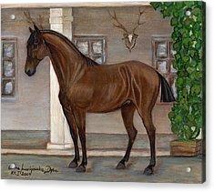 Cavalry Horse Acrylic Print by Anna Folkartanna Maciejewska-Dyba
