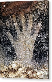 Cave Art: Pech Merle Acrylic Print by Granger