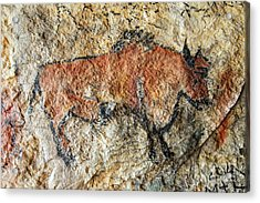 Cave Painting In Prehistoric Style Acrylic Print by Michal Boubin
