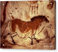 Cave Painting Of A Horse Acrylic Print