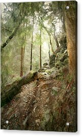 Cavern Walk ..... Acrylic Print by Richie Dean