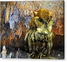 Cavern Watch Acrylic Print