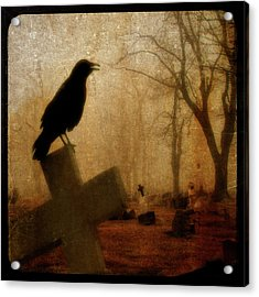 Cawing Night Crow Acrylic Print by Gothicrow Images