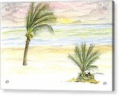 Acrylic Print featuring the digital art Cayman Beach by Darren Cannell