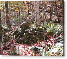 CCC Acrylic Print by Peter Williams