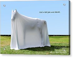 Acrylic Print featuring the photograph Ceci N'est Pas Une Cheval by Bill Thomson