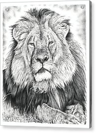 Cecil The Lion  Acrylic Print by Remrov