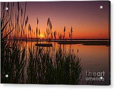 Cedar Beach Sunset In The Reeds Acrylic Print