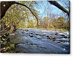 Cedar River 2 Acrylic Print