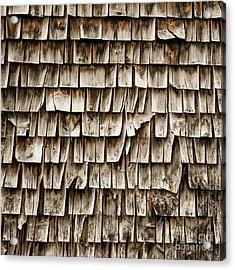 Cedar Shingles Pattern Acrylic Print by Edward Fielding