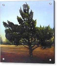 Cedar Sold Acrylic Print