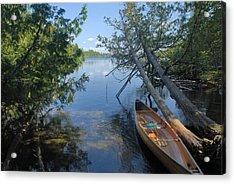 Cedar Strip Canoe And Cedars At Hanson Lake Acrylic Print by Larry Ricker