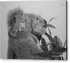 Ceduna Acrylic Print by Jennifer Watson