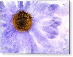Celebrate Spring Acrylic Print by Krissy Katsimbras