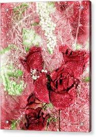 Celebrate Winter Acrylic Print