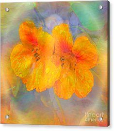 Celebration Of Life. Acrylic Print