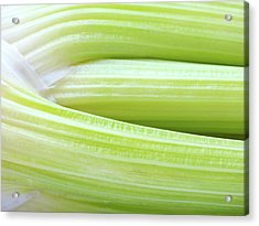 Celery Abstract Acrylic Print