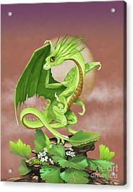 Acrylic Print featuring the digital art Celery Dragon by Stanley Morrison