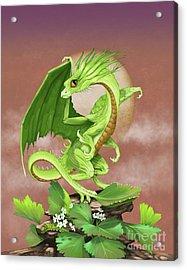 Celery Dragon Acrylic Print