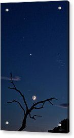Celestial Alignment Acrylic Print