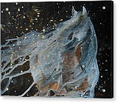 Acrylic Print featuring the painting Celestial Stallion  by Jani Freimann