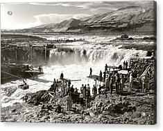 Celilo Falls Acrylic Print by Unknown