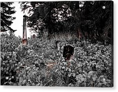 Cemetery In Red Acrylic Print