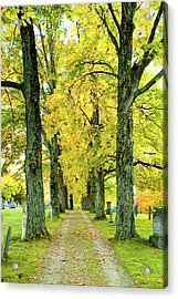 Acrylic Print featuring the photograph Cemetery Lane by Greg Fortier