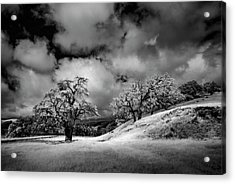 Acrylic Print featuring the photograph Central California Ranch by Sean Foster