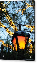 Central Park 6546 Acrylic Print by PhotohogDesigns