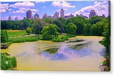 Central Park And Lake, Manhattan Ny Acrylic Print