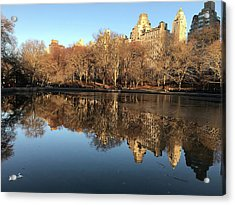 Acrylic Print featuring the photograph Central Park City Reflections by Madeline Ellis