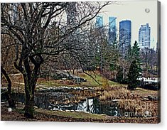 Acrylic Print featuring the photograph Central Park In January by Sandy Moulder