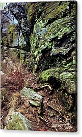 Acrylic Print featuring the photograph Central Park Rock Formation by Sandy Moulder