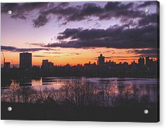 Central Park Sunrise Acrylic Print by Ariane Moshayedi