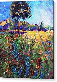 Central Texas Spring Pasture Acrylic Print