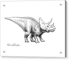 Cera The Triceratops - Dinosaur Ink Drawing Acrylic Print