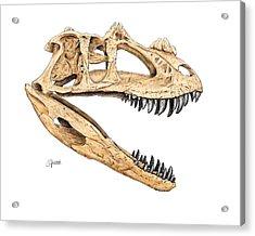 Ceratosaur Skull Acrylic Print
