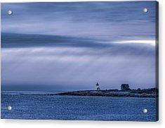 Cerulean Straitsmouth Acrylic Print
