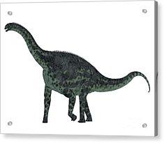 Cetiosaurus Dinosaur Side Profile Acrylic Print