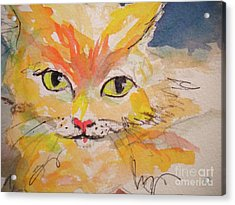 Cfo  Chief Furry Officer Of Jilly Willy Art Acrylic Print