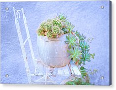 Chair And Cacti Acrylic Print