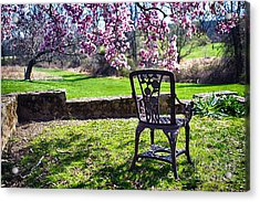 Chair In The Garden Under A Blooming Magnolia Tree Acrylic Print
