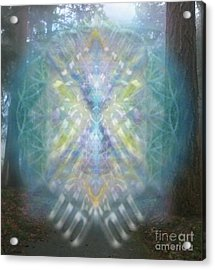 Chalice-tree Spirit In The Forest V1 Acrylic Print by Christopher Pringer