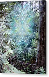 Chalice-tree Spirit In The Forest V3 Acrylic Print by Christopher Pringer